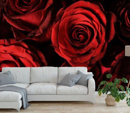 Фототапет Червени рози