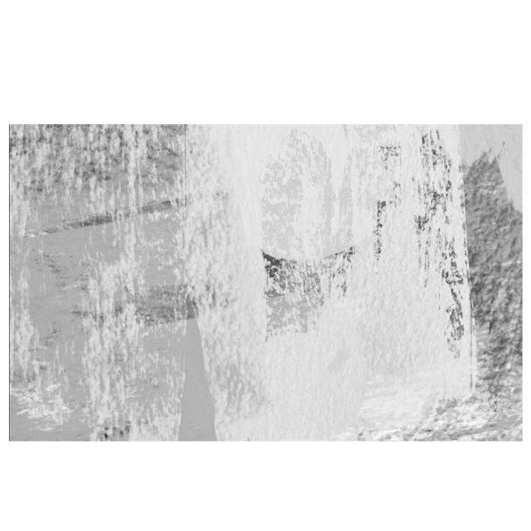 fototapet-beli-palmovi-lista (6)