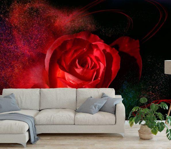 fototapet-chervena-roza (2)