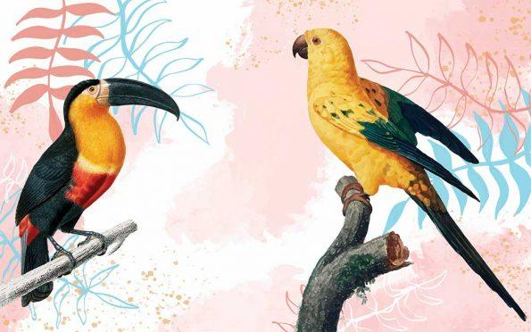 fototapet-tukan-i-papagal (1)