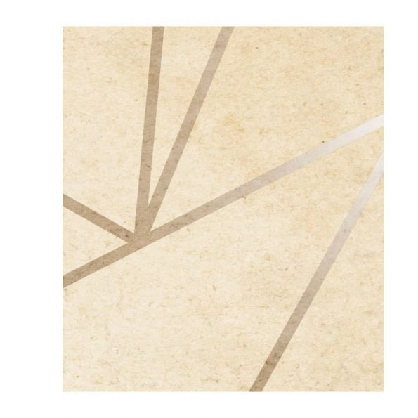 fototapet-zlatna mreja (5)
