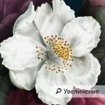 fototapet-cvetna-stena (3)