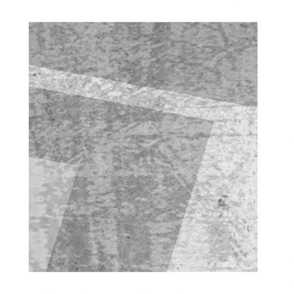 fototapet-sivi-pravoygylnici (5)
