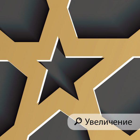 fototapet-zvezdna-mreja (1)